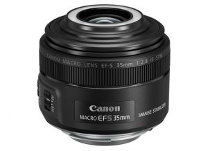 canon ef-s 35mm macro IS STM